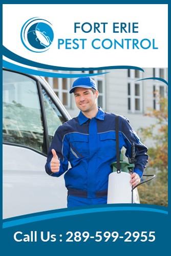 Fort Erie Pest Control
